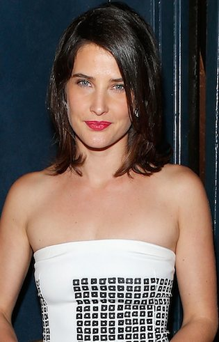 Cobie Smulders Body Transformation