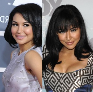 Naya Rivera Plastic Surgery Before After