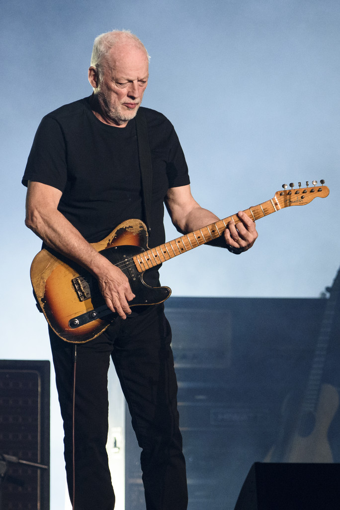 David Gilmour Body Transformation