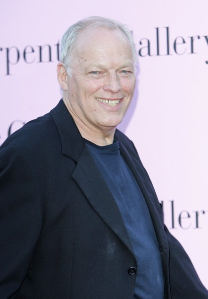 David Gilmour Plastic Surgery Before After