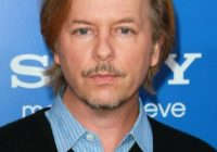 David Spade Plastic Surgery Before After